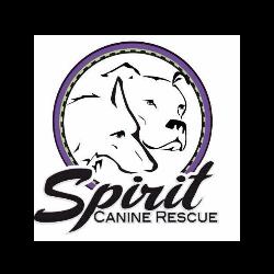 Spirit Canine Rescue