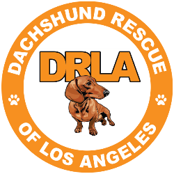 Pitman Animal Rescue Foundation