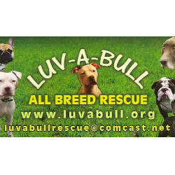 Luv A Bull All Breed Rescue Inc