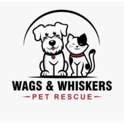 Willows Wags and Whiskers