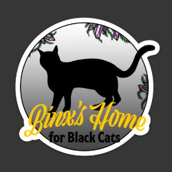 Binx's Home for Black Cats