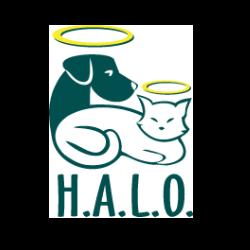 Homeless Animals Lifeline Organization