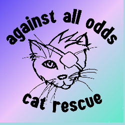 Against All Odds Cat Rescue