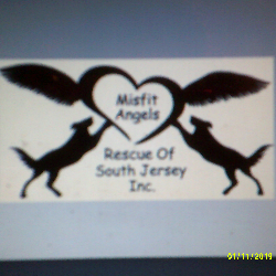 Misfit Angels of South Jersey Rescue, Inc