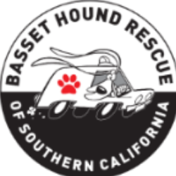 Basset Hound Rescue of Southern California