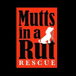 Mutts in Rut Rescue
