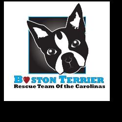 Boston Terrier Rescue Team Of The Carolinas Inc