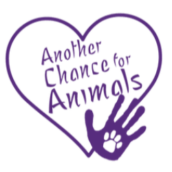 Another Chance For Animals