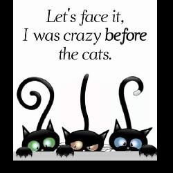 Happy Cat Tales