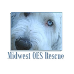 Midwest Old English Sheepdog Rescue, Inc.