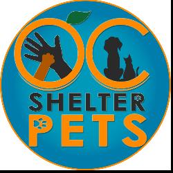 OC Shelter Pets