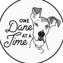 One Dane at a Time, Inc.