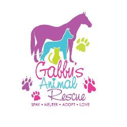 Gabby's Animal Rescue