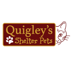 Quigley's Shelter Pets, Inc.