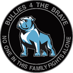 Bullies 4 The Brave, Inc