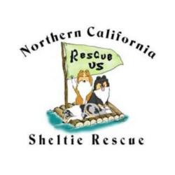 NorCal Sheltie Rescue Inc