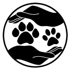 Hands to Paws