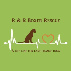 R & R Boxer Rescue