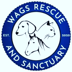Wags Rescue and Sanctuary