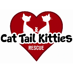 Cat Tail Kitties