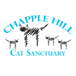 Chapple Hill Cat Services