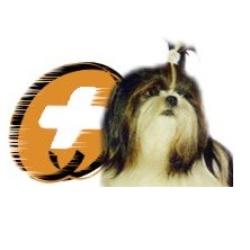 Shih Tzu Lap Dog Rescue Inc