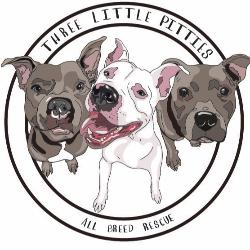 Three Little Pitties Rescue