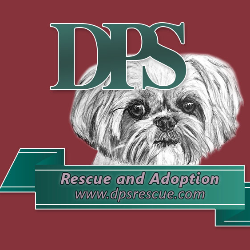 Doggie Protective Services for Homeless Tails