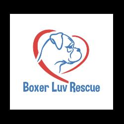 Boxer Luv Rescue