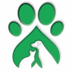 Wonder Paws Rescue