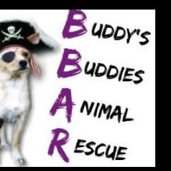 Buddy's Buddies Animal Rescue, Inc.