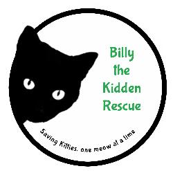 Billy the Kidden Rescue