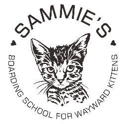 Sammie's Boarding School For Wayward Kittens