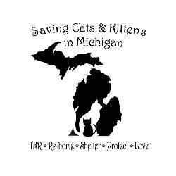 Saving Cats & Kittens in Michigan