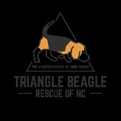 Triangle Beagle Rescue