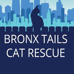 Bronx Tails Cat Rescue Inc