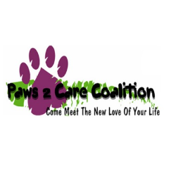 Paws 2 Care Coalition