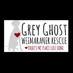 Grey Ghost Weimaraner Rescue