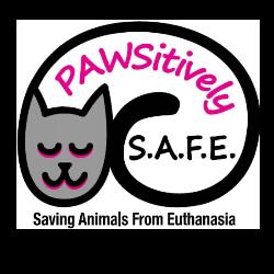 PAWSitively Saving Animals From Euthanasia