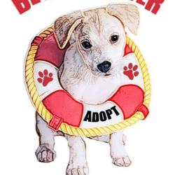 MarrVelous Pet Rescues, Inc