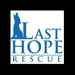 Last Hope Rescue