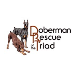 Doberman Rescue of the Triad