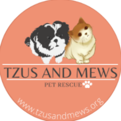 Tzus and Mews