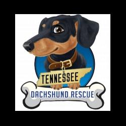 Tennessee Dachshund Rescue
