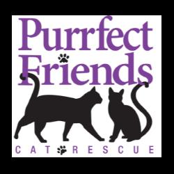 Purrfect Friends Cat Rescue