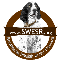 Southwest English Setter Rescue