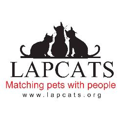 LapCats