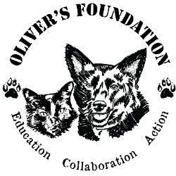 Oliver's Foundation