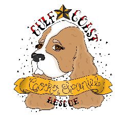 Gulf Coast Cocker Spaniel Rescue, Inc.