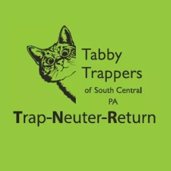 Tabby Trappers